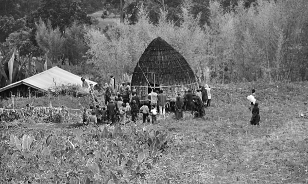 A Gamo community working together to move a house; they will be paid with beer. Photo by John W. Arthur.